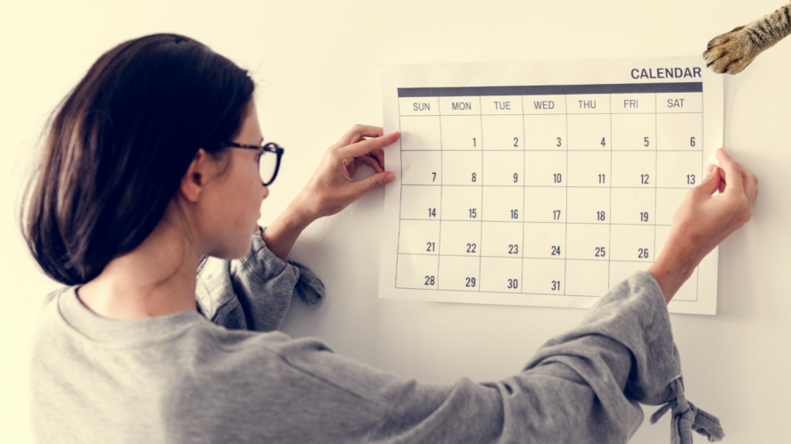 A woman putting a calendar on the wall
