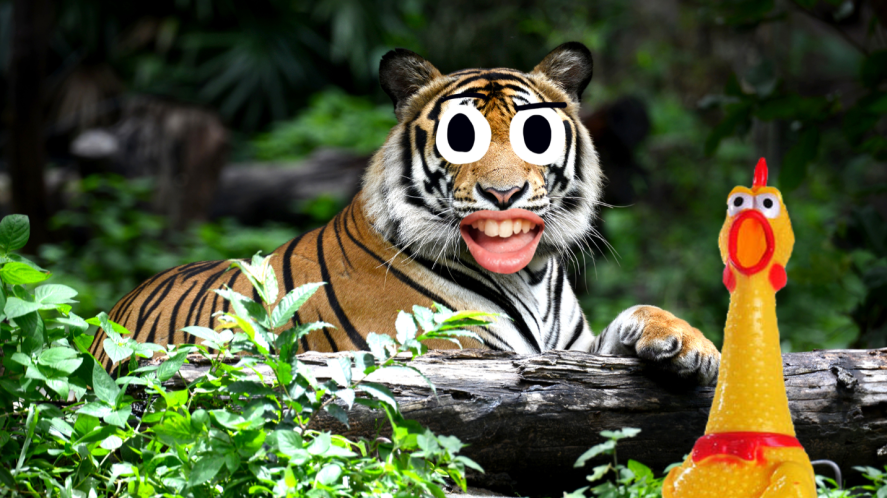 Tiger sitting in jungle