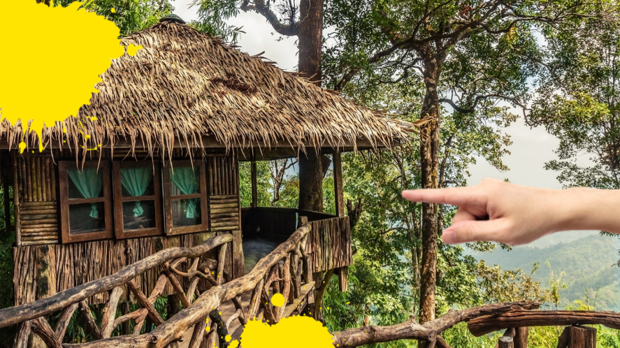 Hand pointing to jungle treehouse