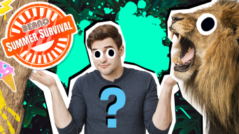 Rule the jungle quiz thumbnail