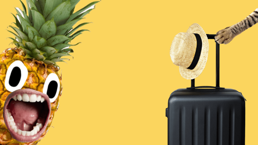 A pineapple and a suitcase