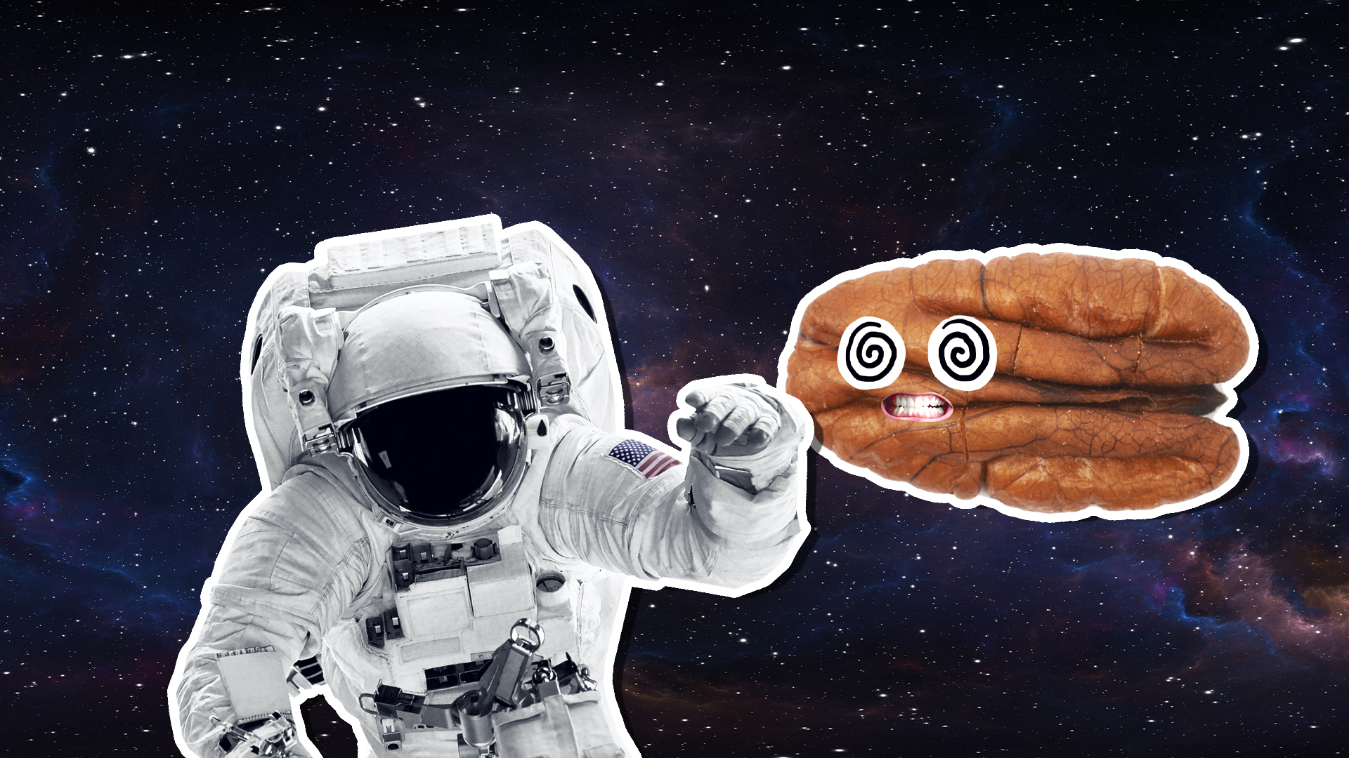 A pecan and astronaut in space