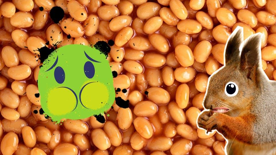 A squirrel, beans and a nauseous emoji