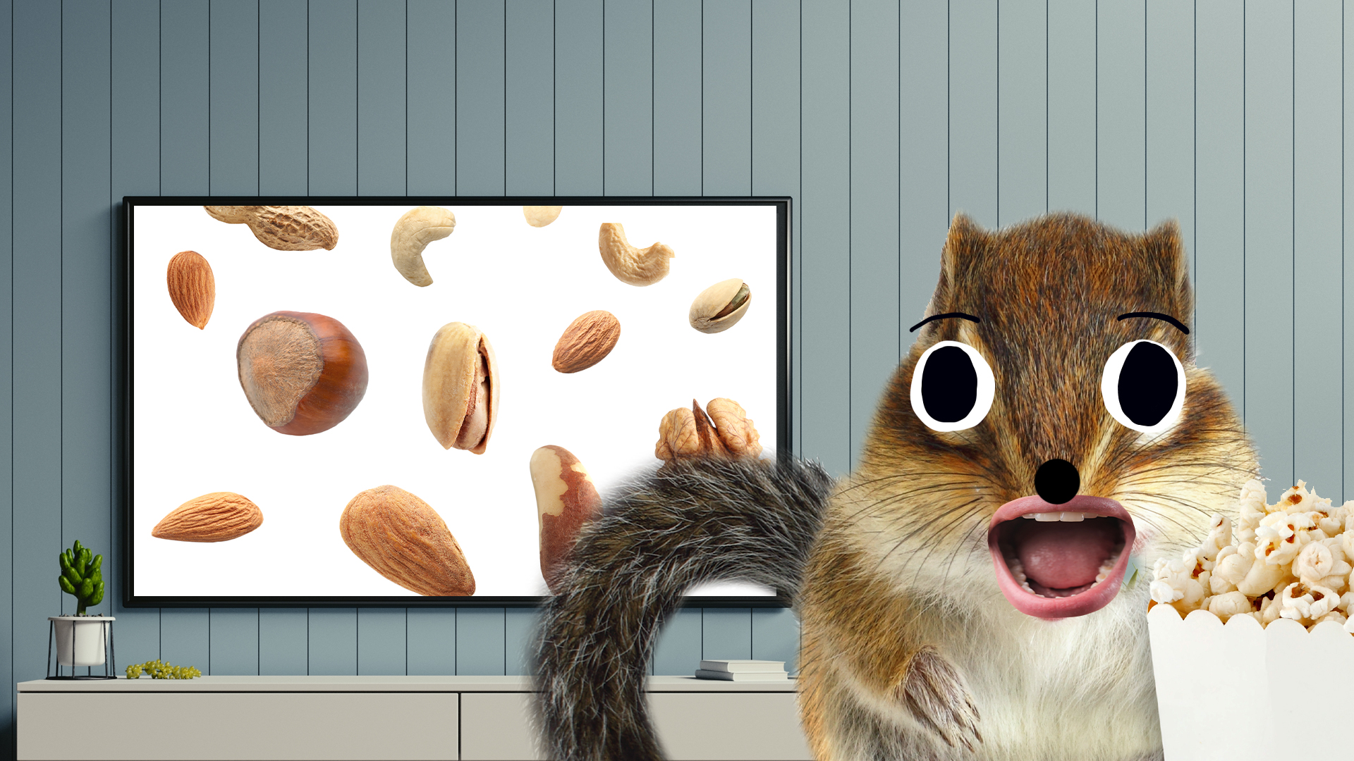 A squirrel watching tv]