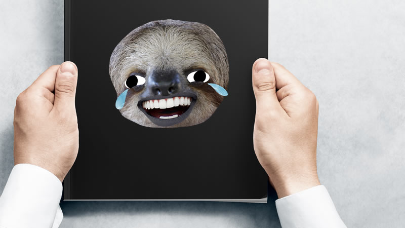 A sloth cry laughing