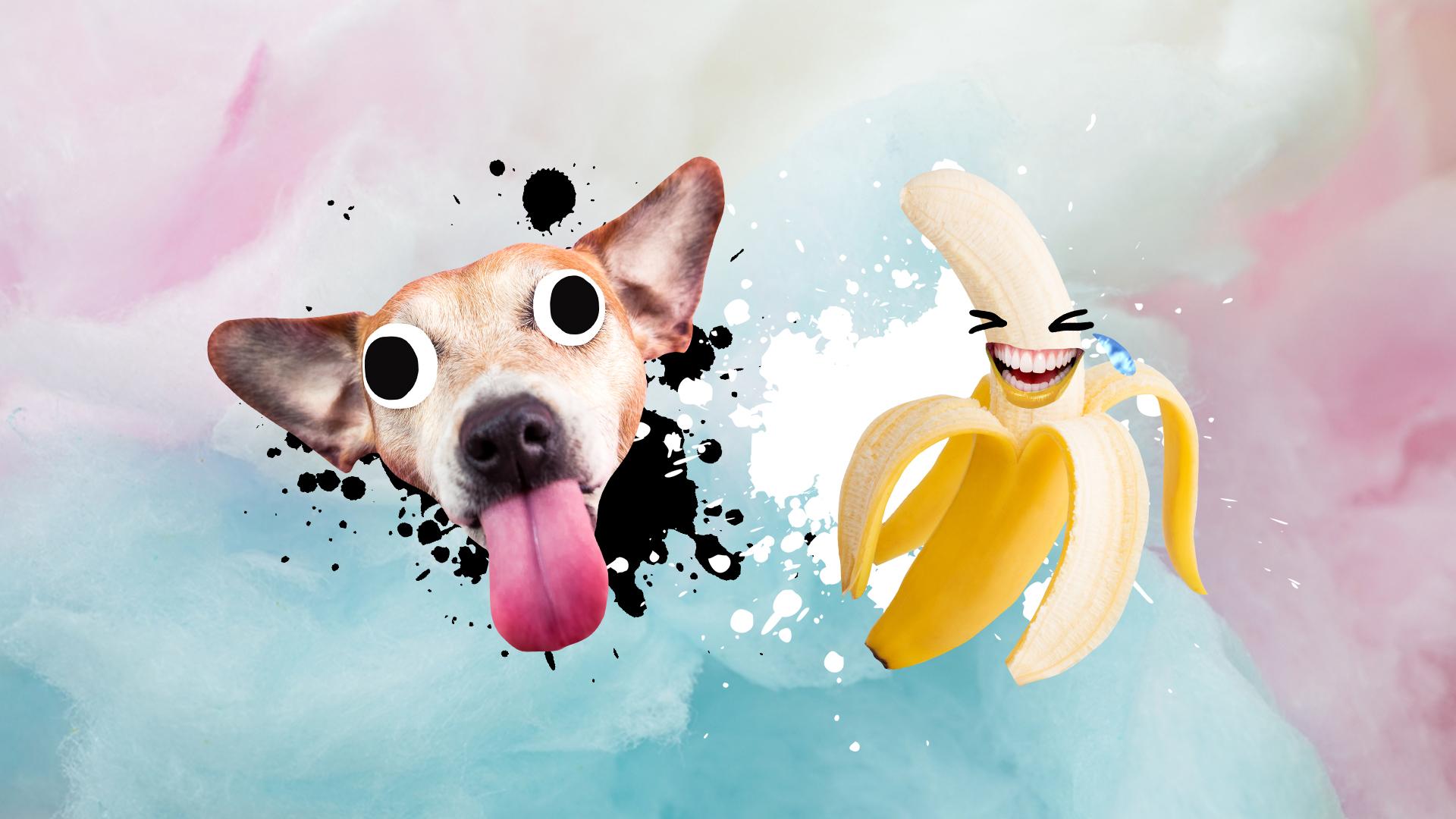 A laughing banana and a cheeky dog