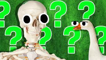 Spooky Picture Quiz