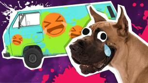 Scooby Doo Jokes