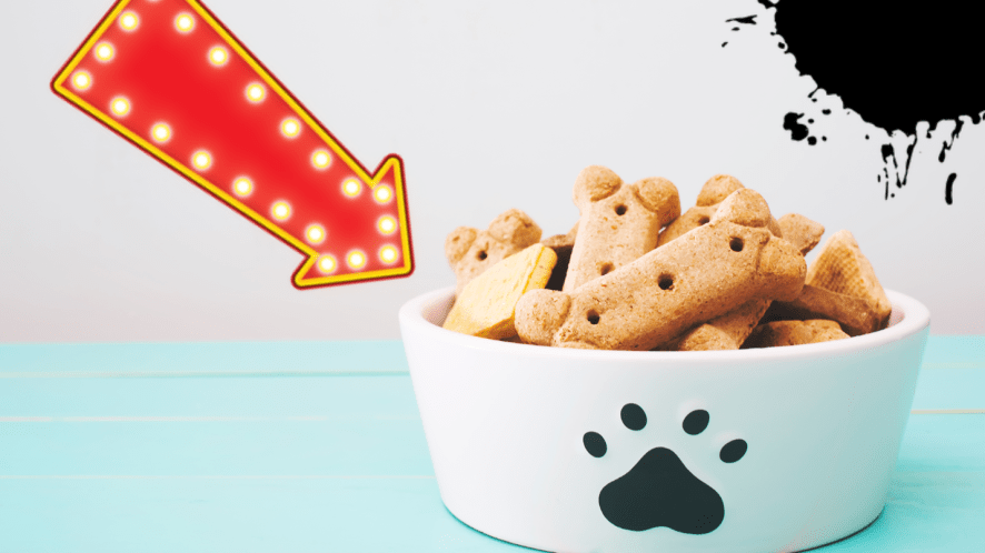Bowl of dog biscuits on blue table