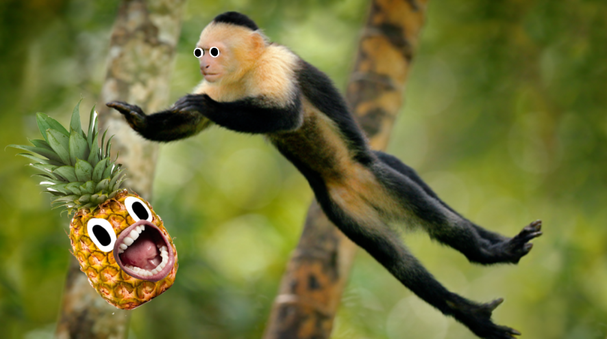 Monkey leaping through trees and screaming pinapple