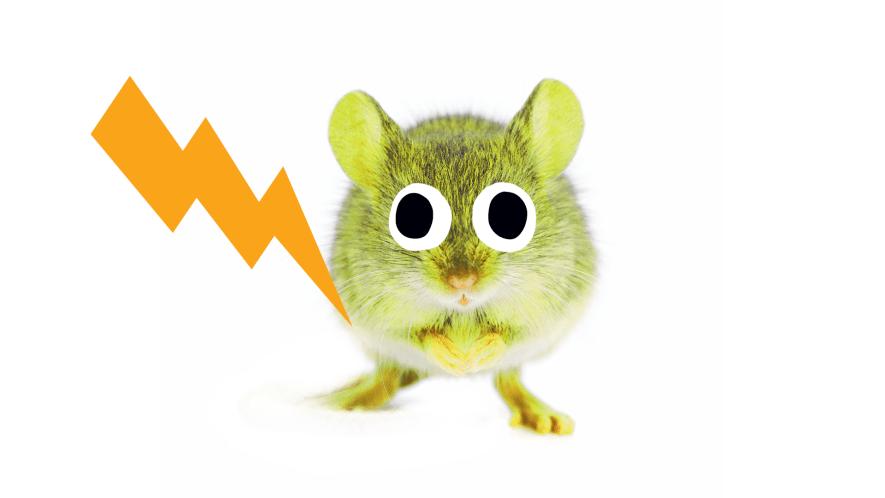 Pikachu thumbnail