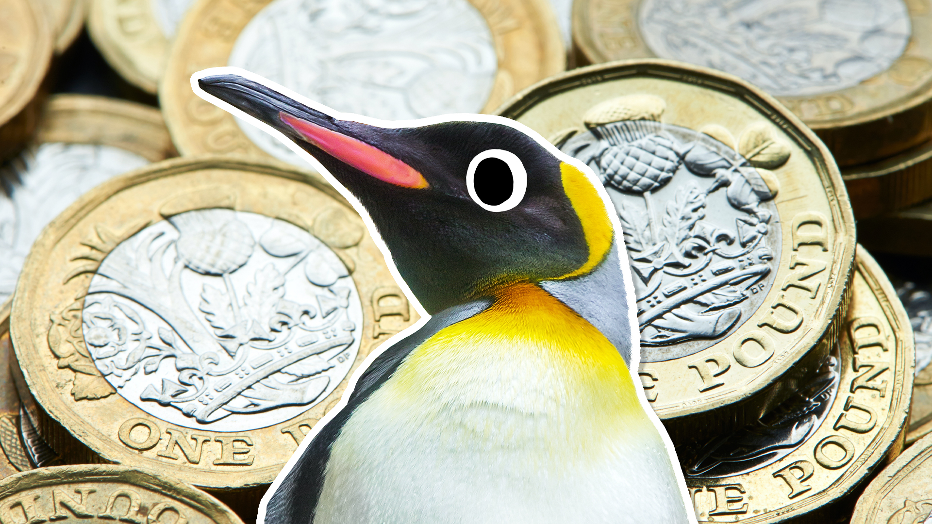 Penguin and coins