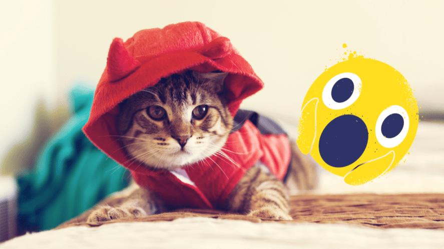 Cat in devil hoodie on bed