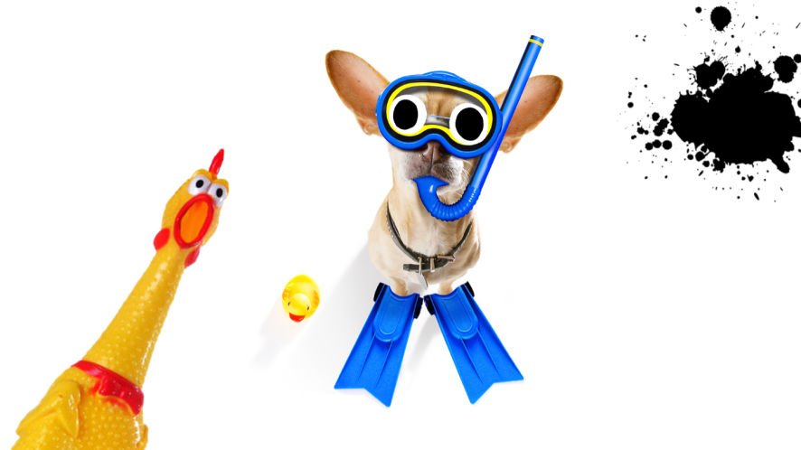 Dog in scuba gear on white background