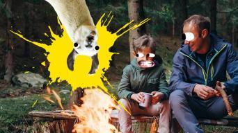 Camping Jokes