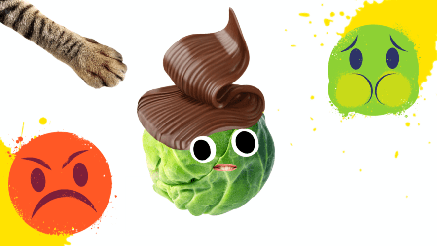 A chocolate sprout