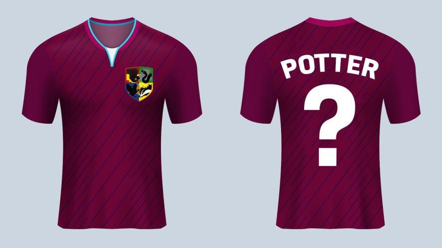 Harry Potter Quidditch shirt
