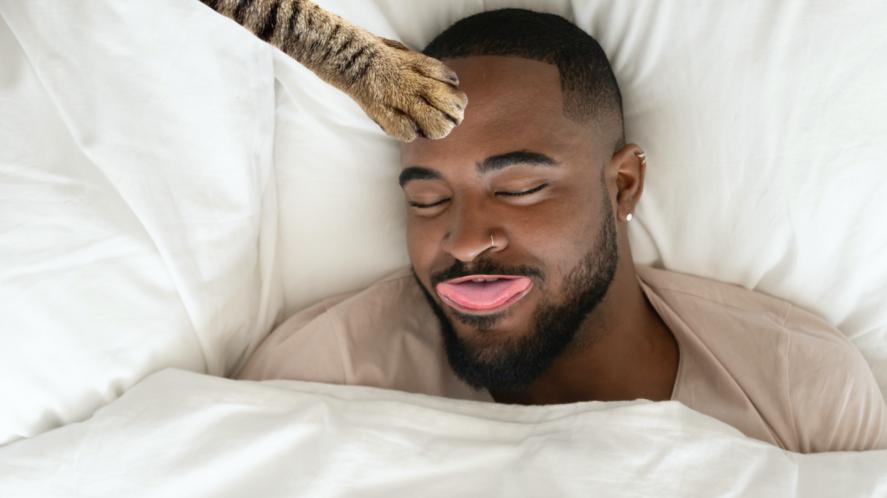 A cat patting a sleeping man's forehead