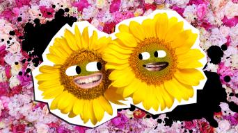 Flower Jokes