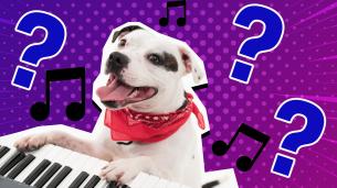 Musical Theatre Quiz Thumbnail