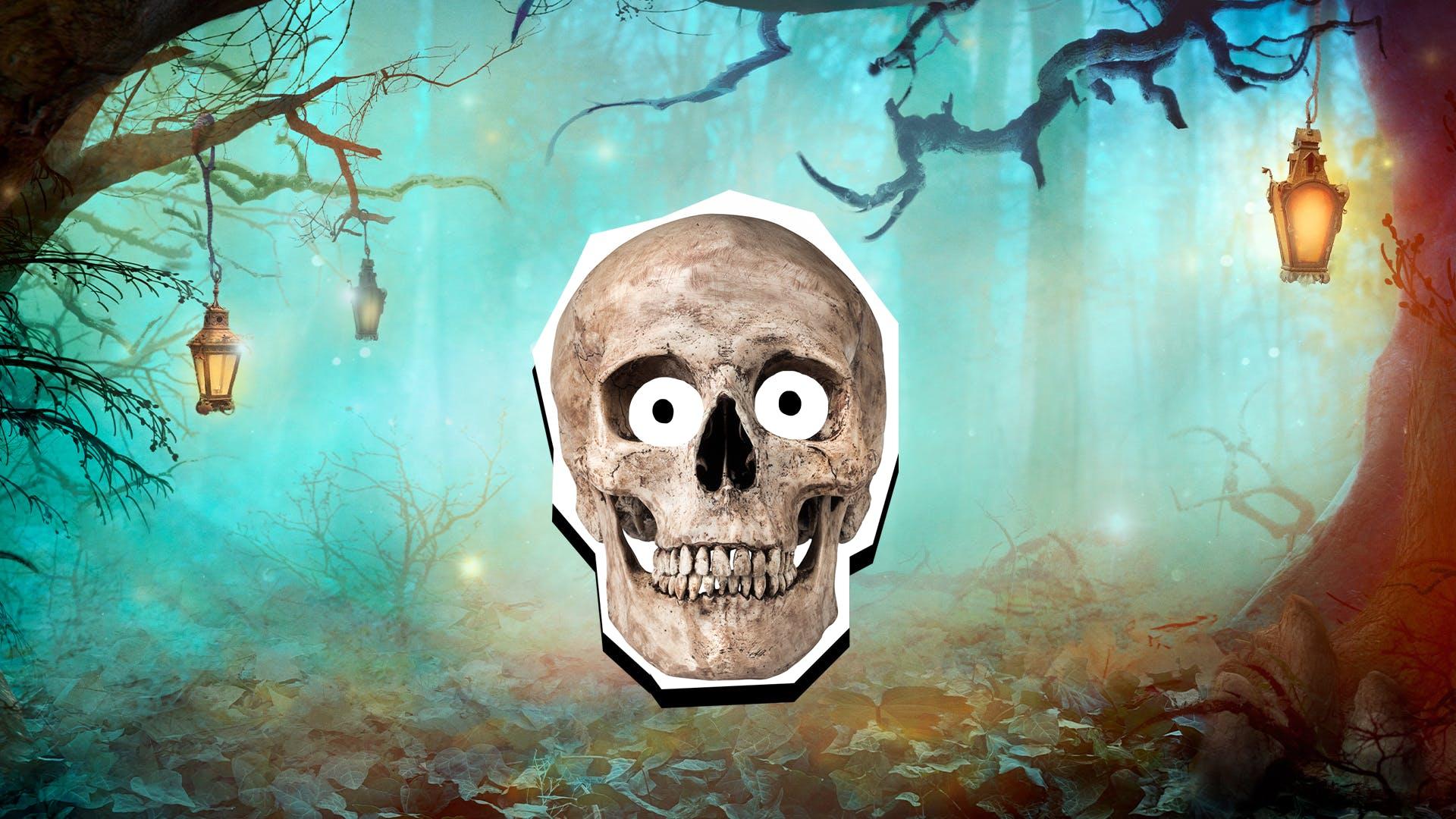 A smiling skull
