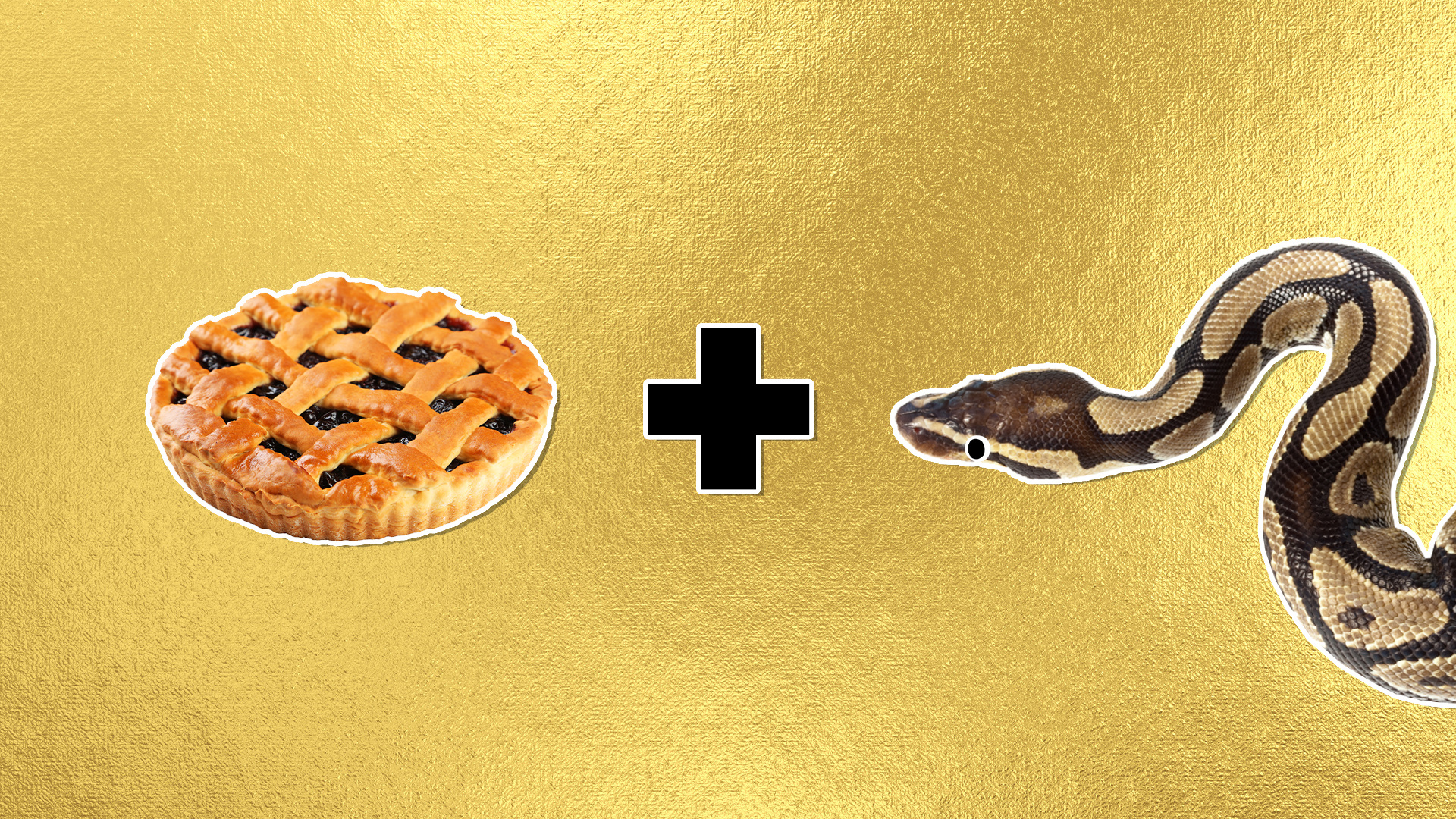 A pie and a snake