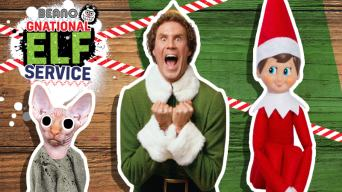 Which Famous Elf Are You?