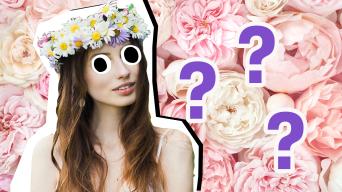Flower quiz thumbnail