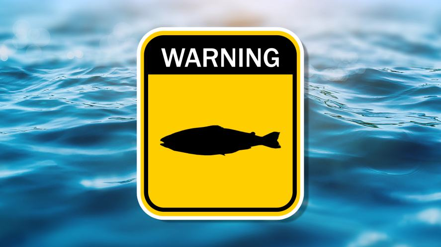 Poison fish warning sign