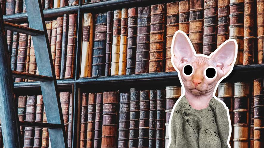 Dobby the house elf