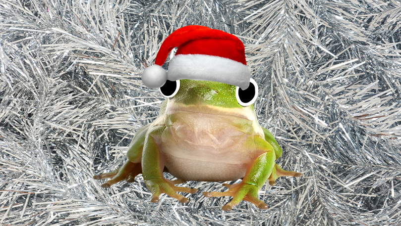 A green frog wearing a red Santa hat in front of a silver tinsel background