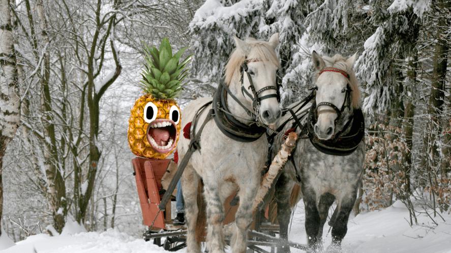 Horses pulling sleigh through snow