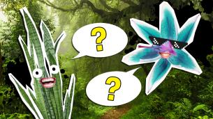 The Ultimate Plants Trivia Quiz
