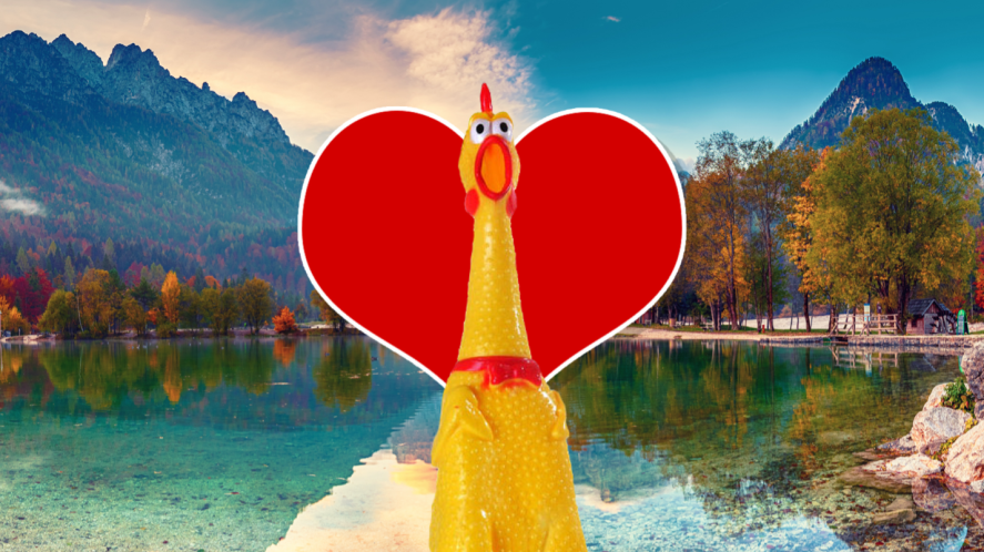 A rubber chicken in love with nature