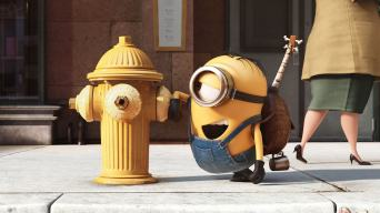 This is a picture of a Minion